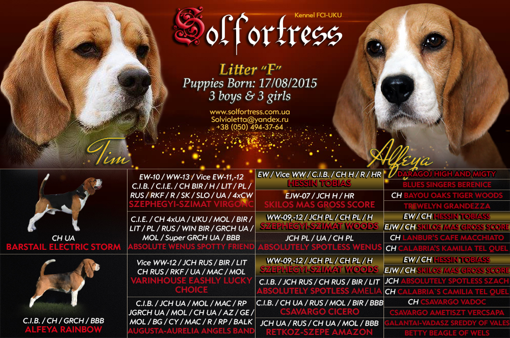 solfortress-pedigree