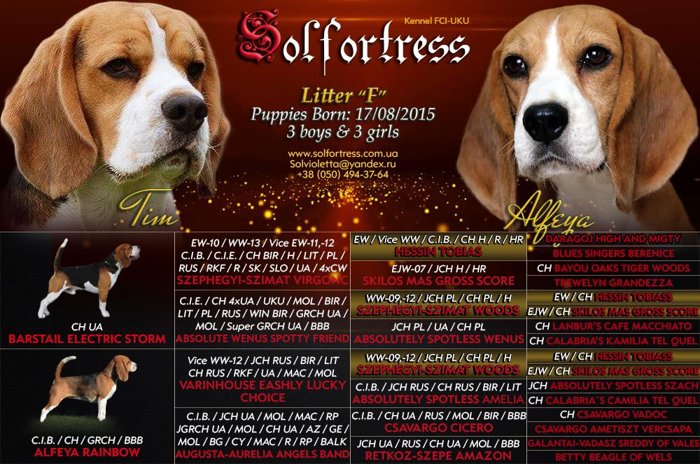 solfortress-pedigree