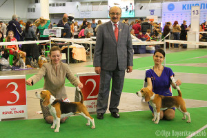 Barstail Easy Breeze - CAC, R.CACIB