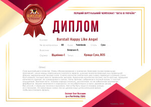 beagle-virtual-championship-68