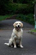 image oe_klip_01030910_23-jpg