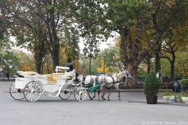 Осенняя Одесса, октябрь 2013