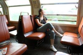 Путешествия с биглями и не только